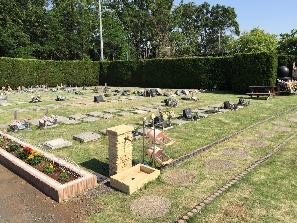 墓地の芝刈りをしました。